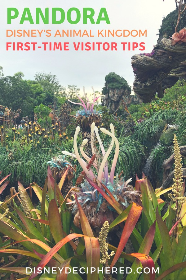 Visiting Pandora - The World of Avatar for the first time? Get tips and tricks for this still-new and still-crowded land in Disney's Animal Kingdom. #pandora #animalkingdom #flightofpassage #disneyworld