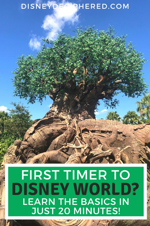 First time Disney World visitor overwhelmed by all the planning required for a vacation? Learn the essentials in just 20 minutes in this crash course for Walt Disney World newbies. #disneyworld #disney