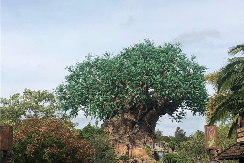 Tree of Life - Day