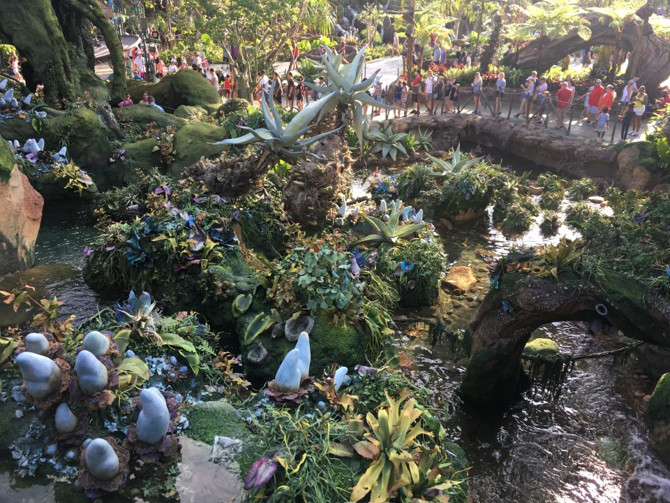 Pandora - Flight of Passage - Attraction Queue