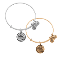 Rapunzel Bangle by Alex and Ani