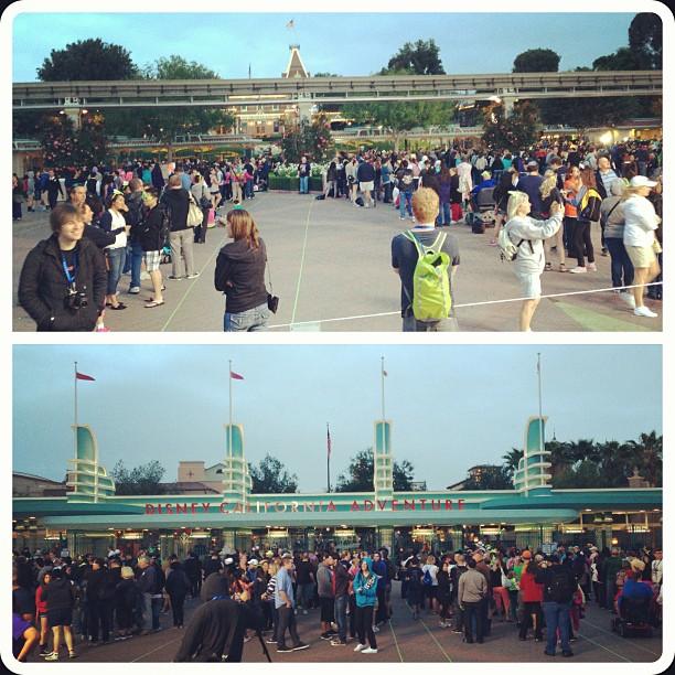 Monstrous Summer All Nighter Morning Lines Disneyland Resort Esplanade