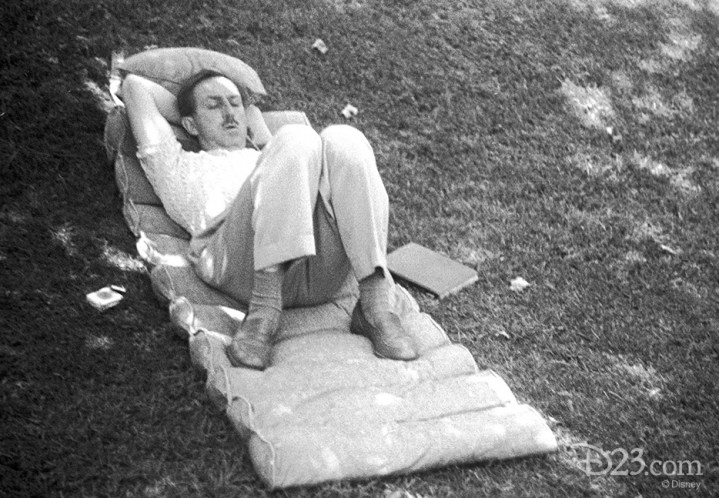 D23 Walt Disney Sleeping Personal Camera Photo