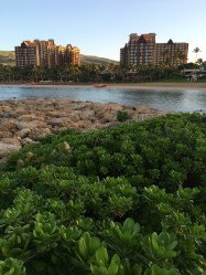 Disney Aulani Resort And Spa Oahu Hawaii Sunrise