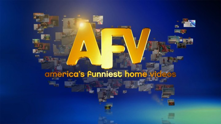 LOGO_AFV-Fall13-color