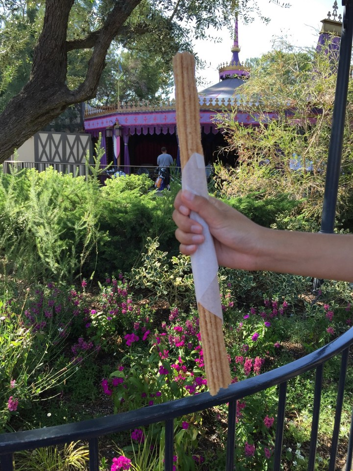 Disneyland Churro