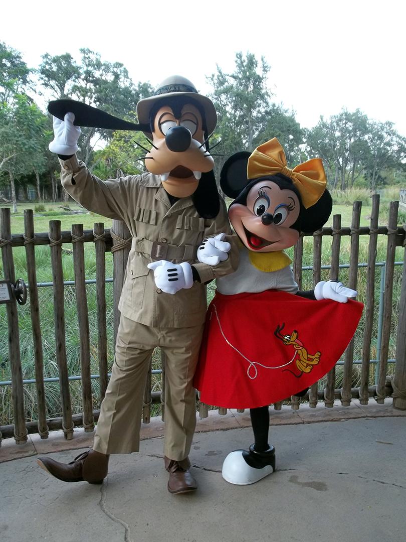 Goofy Minnie Mouse Disney Fab Five Harry Potter Houses