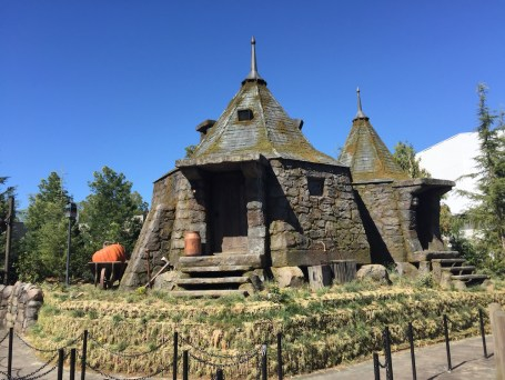 Harry Potter Wizarding World Hollywood Immersive Experience Feature Hagrids Hut