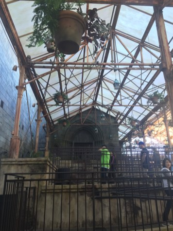 Harry Potter Wizarding World Hollywood Immersive Experience Feature Hogwarts Greenhouse
