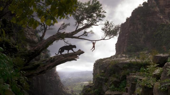Jungle Book Mowgli Swing