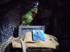 Walt Disney Archives Pavilion Pirates D23 Expo Star Wars Parrot