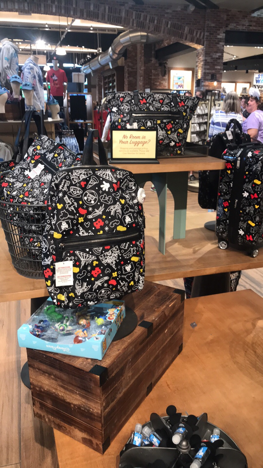 Disney Parks Mickey and Minnie Collection
