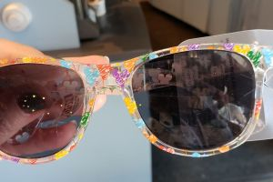 Disney Parks Sunglasses