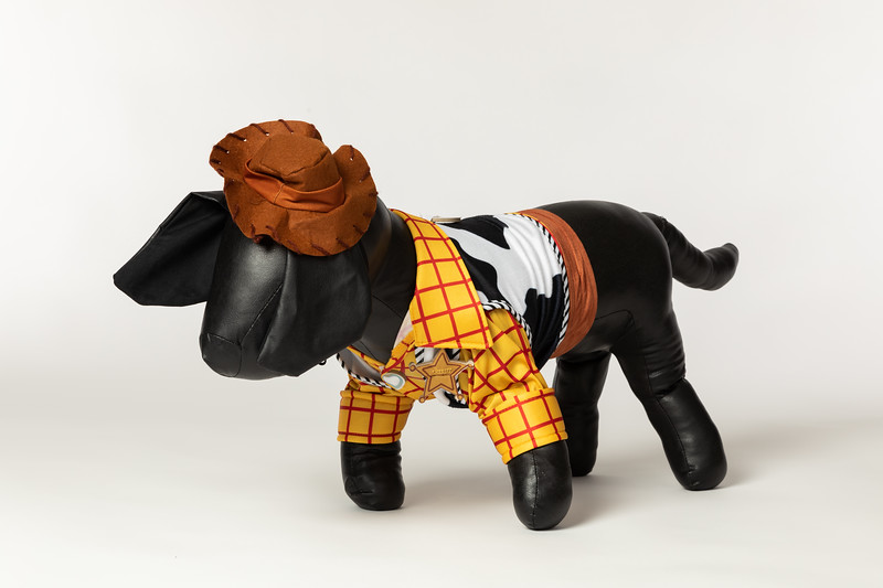 Toy Story 4 Dog Costumes