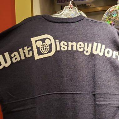 Disney Spirit Jersey Sweater