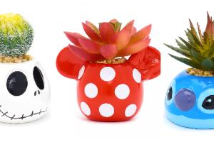 Disney Succulent Potted Plants