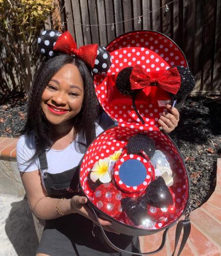 Minnie Ears Carrying Case