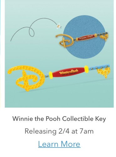 Winnie the Pooh collectible key