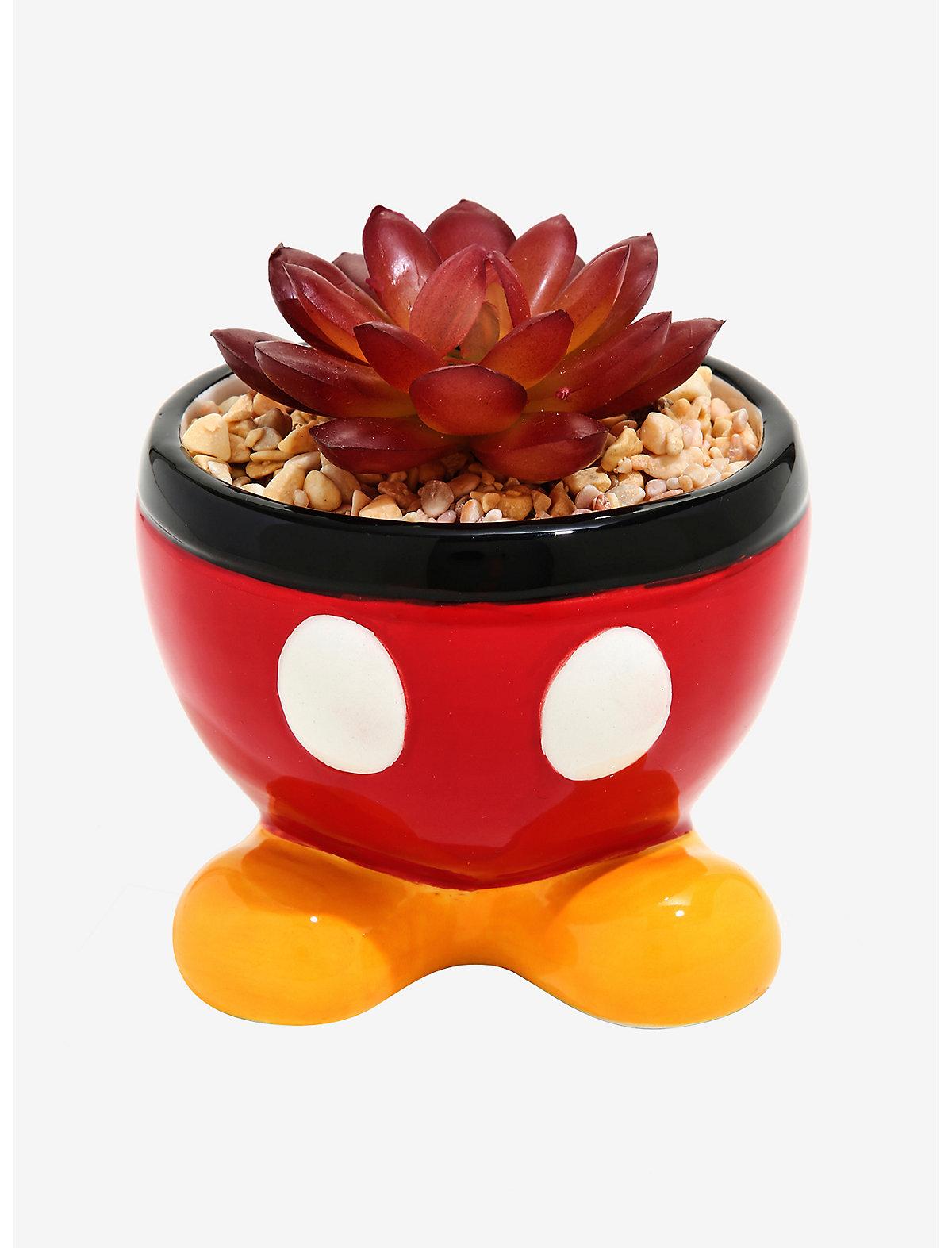 Disney Faux Succulent Planters