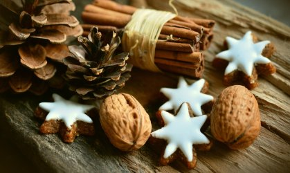 Easy Budget Tree Decorations Your Kids Will Love To Make