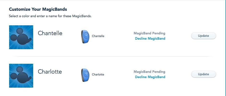 Magic Bands - Disney Magic Every Day