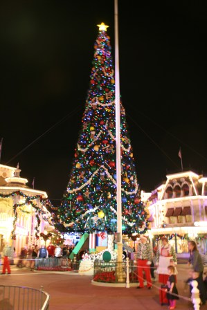 Magic Kingdom Tree