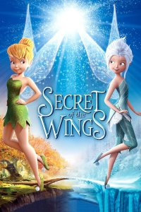 "Poster for the movie ""Secret of the Wings"""
