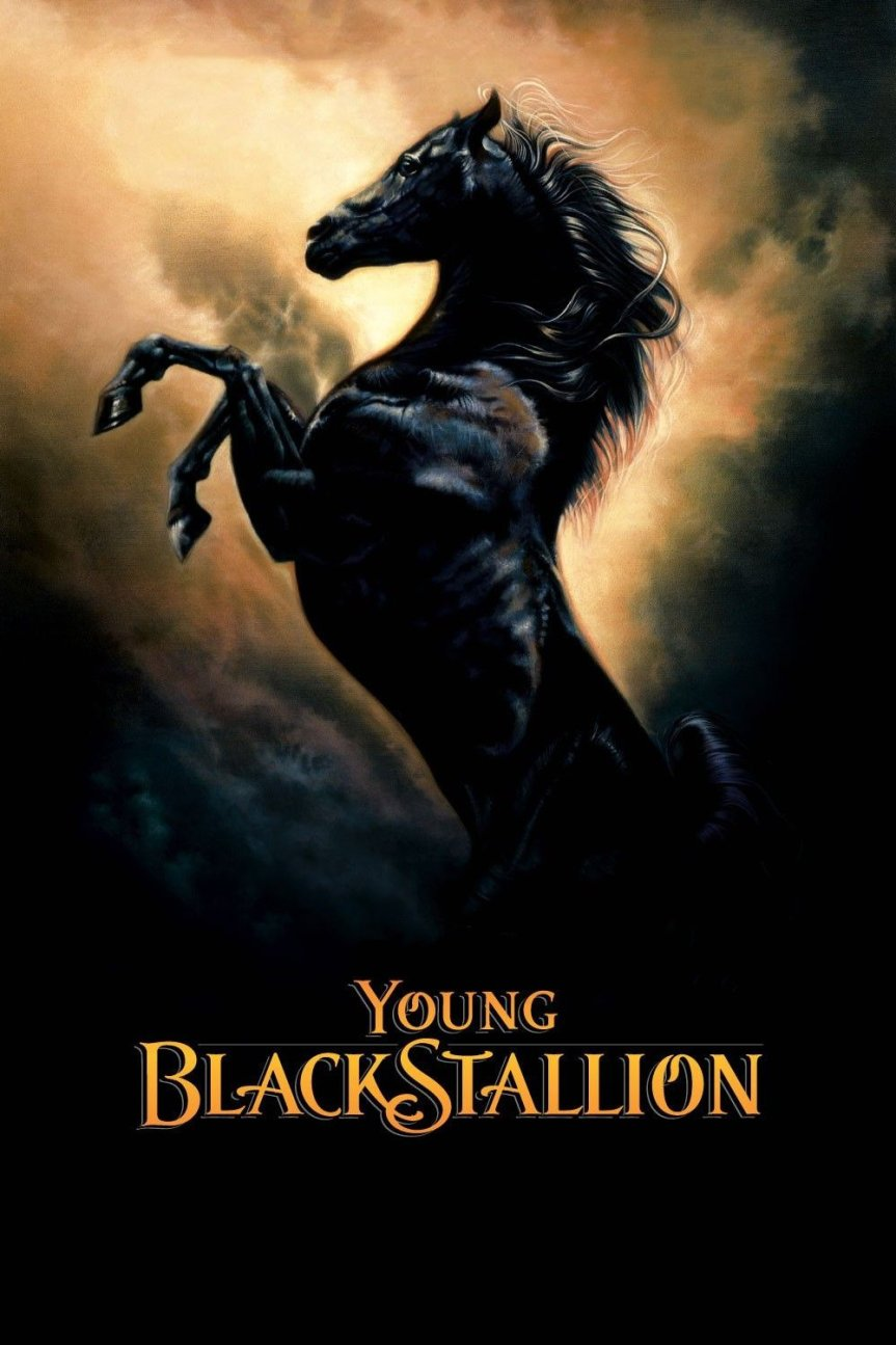 Young Black Stallion