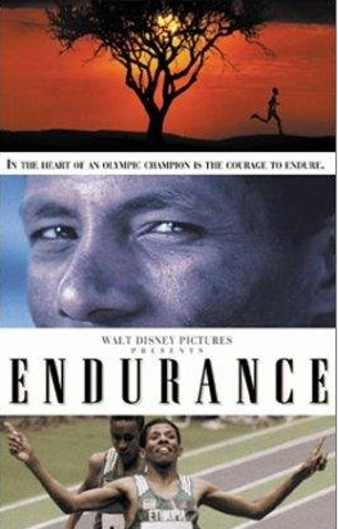 "Poster for the movie ""Endurance"""
