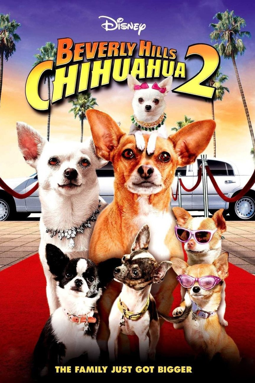 "Poster for the movie ""Beverly Hills Chihuahua 2"""