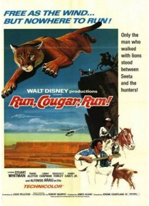 "Poster for the movie ""Run, Cougar, Run"""