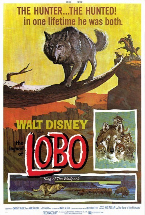 "Poster for the movie ""The Legend of Lobo"""