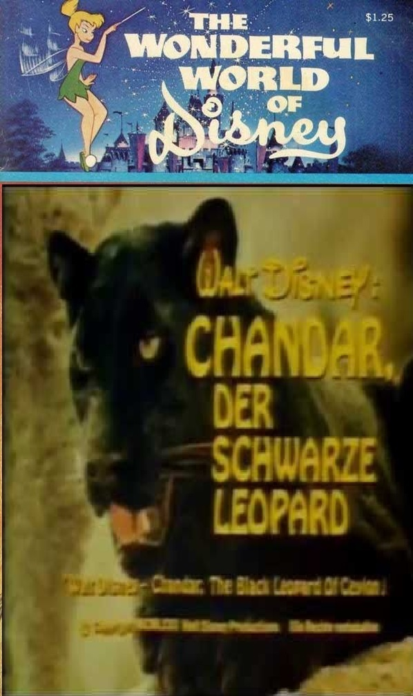 """Poster for the movie """"Chandar, the Black Leopard of Ceylon"""""""