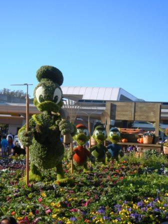 Donald Duck Topiary Epcot