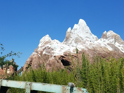 Expedition Everest (Disney World Ride)