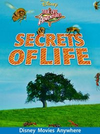 Secrets Of Life (1956 Movie)