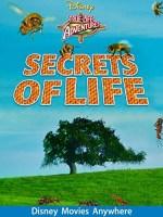 Secrets Of Life (1956 Movie)