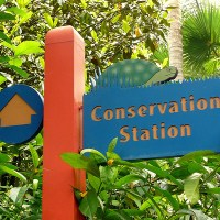 Conservation Station (Disney World)