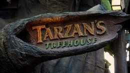 Tarzan's Treehouse disneyland