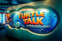 Turtle Talk with Crush (Disney World Show)