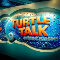 Turtle Talk with Crush (Disney World)