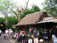 Harambe Fruit Market (Disney World)