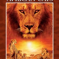 African Cats (2011 Movie)