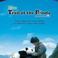 Trail Of The Panda (2009 Movie)