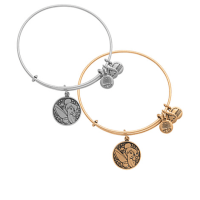 Tinker Bell Bangle by Alex and Ani