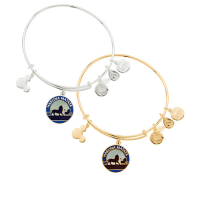 "The Lion King ""Hakuna Matata"" Bangle by Alex and Ani"