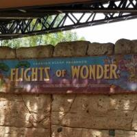 Flights of Wonder | Extinct Disney World Attractions