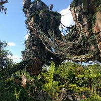 Avatar Flight of Passage (Disney World)
