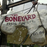 Boneyard (Disney World)