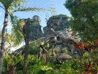 Avatar Flight of Passage (Disney World)